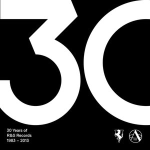 Image for '30 Years of R&S Records'