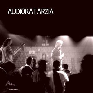 Bild för 'Audiokatarzia'