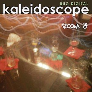 Image for 'Kaleidoscope Room 3'