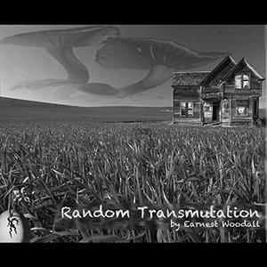 Image pour 'Random Transmutation'