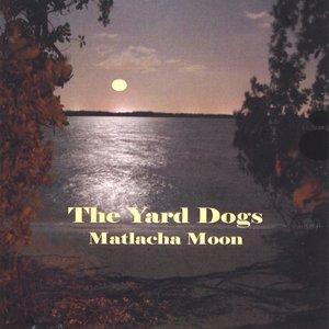 Imagem de 'Matlacha Moon'