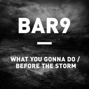 Imagen de 'What You Gonna Do / Before The Storm'