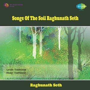 Bild für 'Songs of Soil - Raghunath Seth'