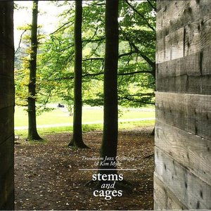 Image for 'Stems And Cages'