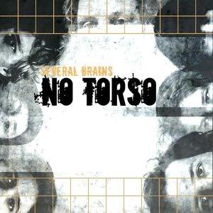 Image for 'No Torso'
