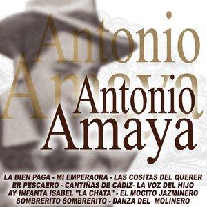 Image for 'Flamenco Y Copla'