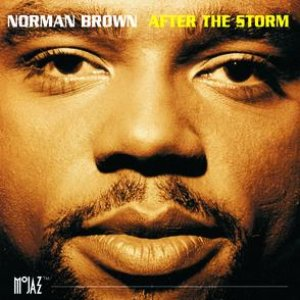 Image pour 'After The Storm'