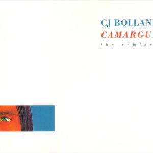 Image for 'Camargue'