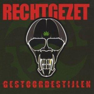 Image for 'Gestoordestijlen'