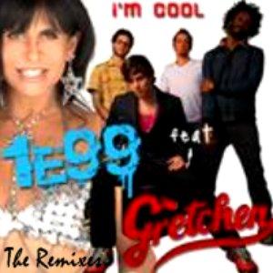 Bild für 'I'm Cool (The Remixes) [feat. Gretchen]'