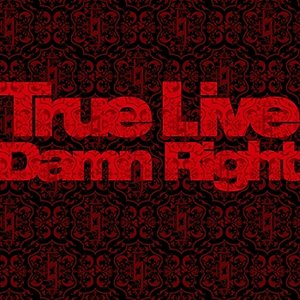 Image for 'Damn Right'