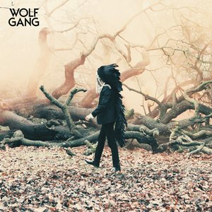 Image for 'Wolf Gang EP'
