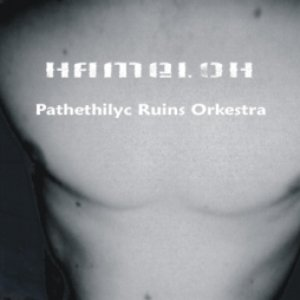 Image for 'Pathethylic Ruins Orkestra'