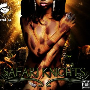 Bild för 'Safari Knights'
