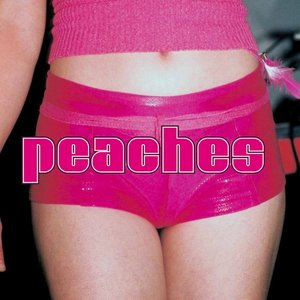 Image for 'The Teaches of Peaches'