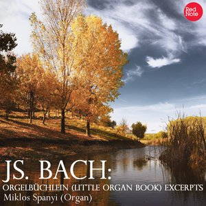 Image for 'Bach: Orgelbüchlein (Little Organ Book) Excerpts'