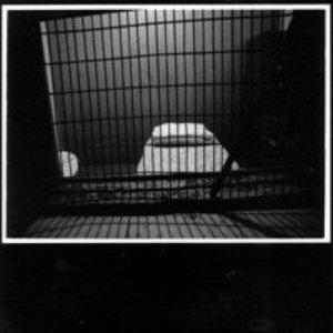 Image for 'Grim, Drunk & Frostbitten'