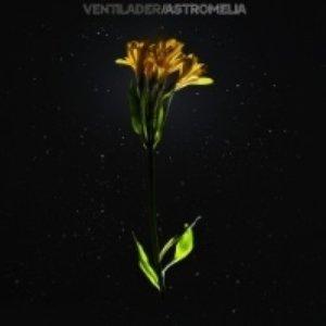 Immagine per 'Astromelia'