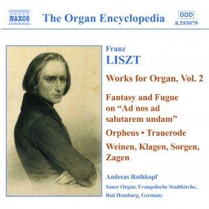 Image for 'LISZT: Organ Works, Vol.  2'