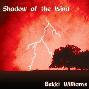 Image for 'Shadow of the Wind'
