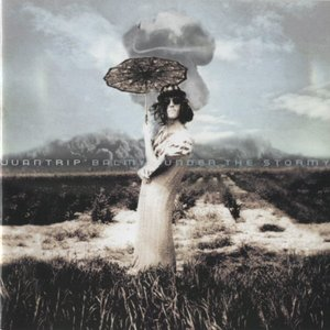 Image for 'Balmy under the Stormy'