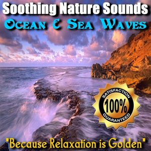 Image for 'Ocean and Sea Waves'