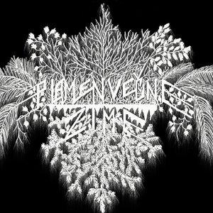 Image for 'Plamen Vecne Zime'