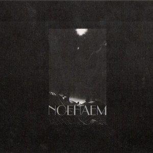Image for 'Noehaem'
