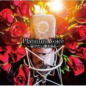 Image for 'Platinum Voice All Stars'