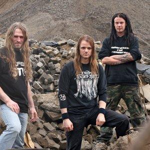 Bild für 'Noise Forest'