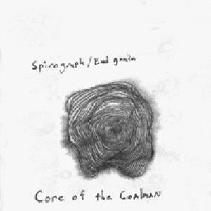 Immagine per 'Spirograph/End Grain'