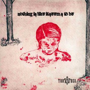 Image for 'nothing is like it seems to be'