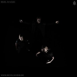 Image for 'Revel In Void'