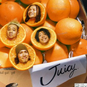 Image for 'Silly Fools Juicy'