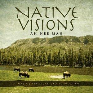 Bild für 'Native Visions: A Native American Music Journey'
