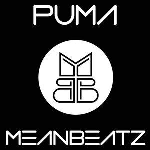 Image for 'Puma'