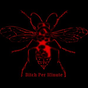 Image for 'Bitch Per Minute'
