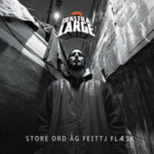 Image for 'Store Ord Åg Feittj Flæsk'