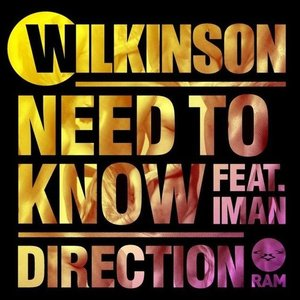Image for 'Wilkinson Feat. Iman'