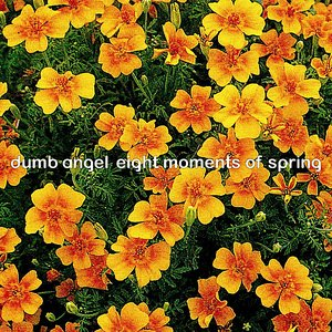 Image pour 'Eight Moments of Spring'
