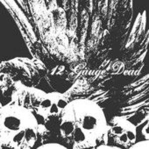 Bild für 'Rotting Ashes'
