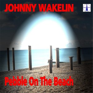Image for 'Pebble On the Beach'