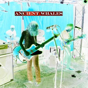 Image for 'Ancient Whales Live'