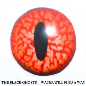 Image for 'Water Will Find a Way'