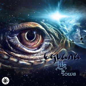 Bild für 'Life Flows'