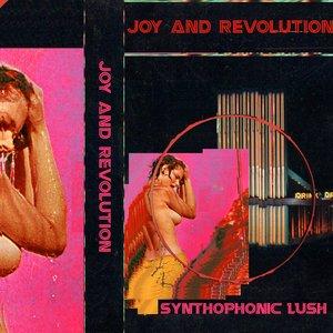 Image for 'SYNTHOPHONIC LUSH'