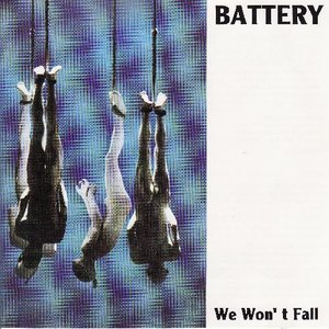 Image for 'We Won't Fall'