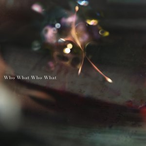 Image for 'Who What Who What'