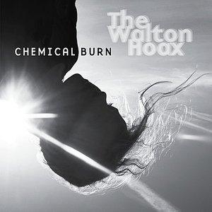 Image for 'Chemical Burn'
