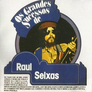 Image for 'Os Grandes Sucessos De Raul Seixas'
